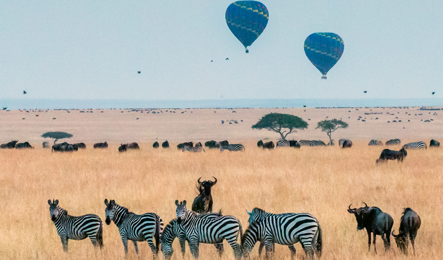 Hop in your hot air balloon above the Maasai Mara