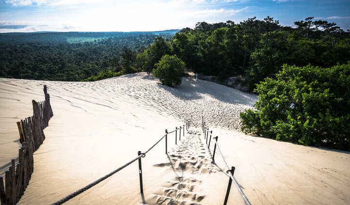 Feel free to head to Arcachon Bay to see the impressive sand dunes and try some oysters