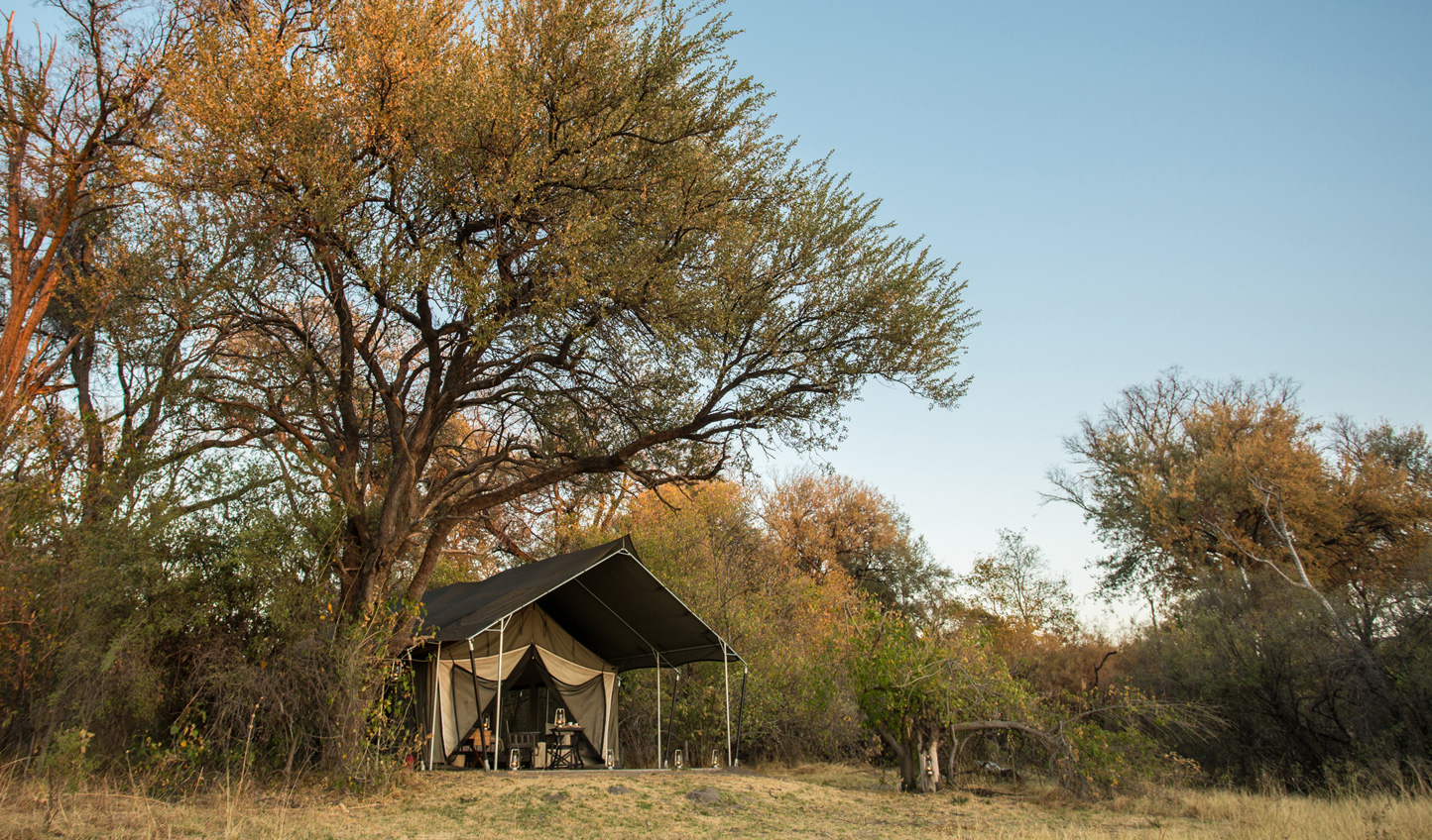 Meander through the Moremi Game Reserve to reach your tent