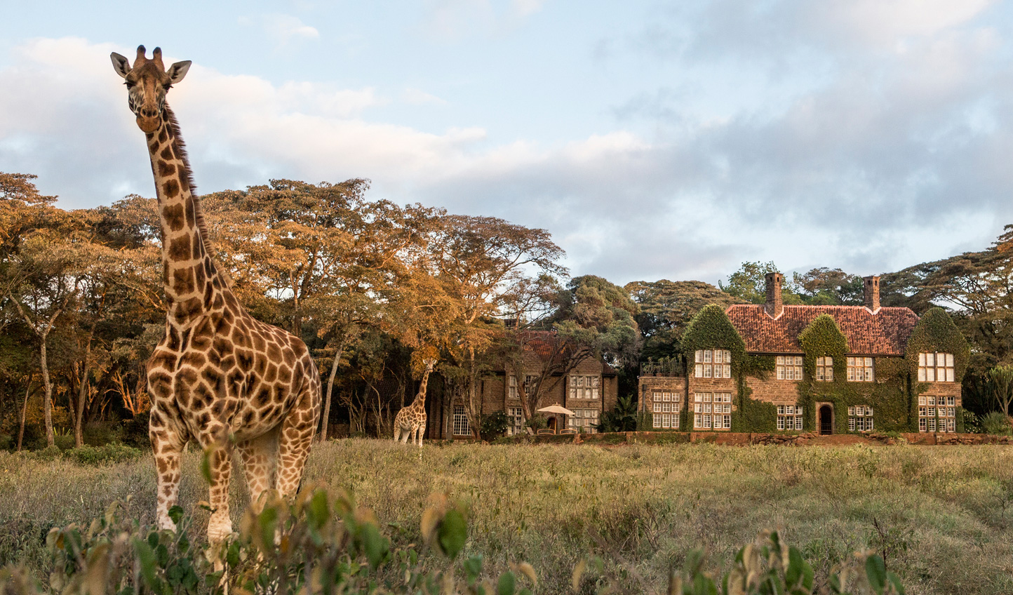 You can be assured of a friendly welcome at Giraffe Manor