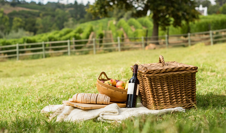 Have a romantic picnic in the grounds of the vineyard