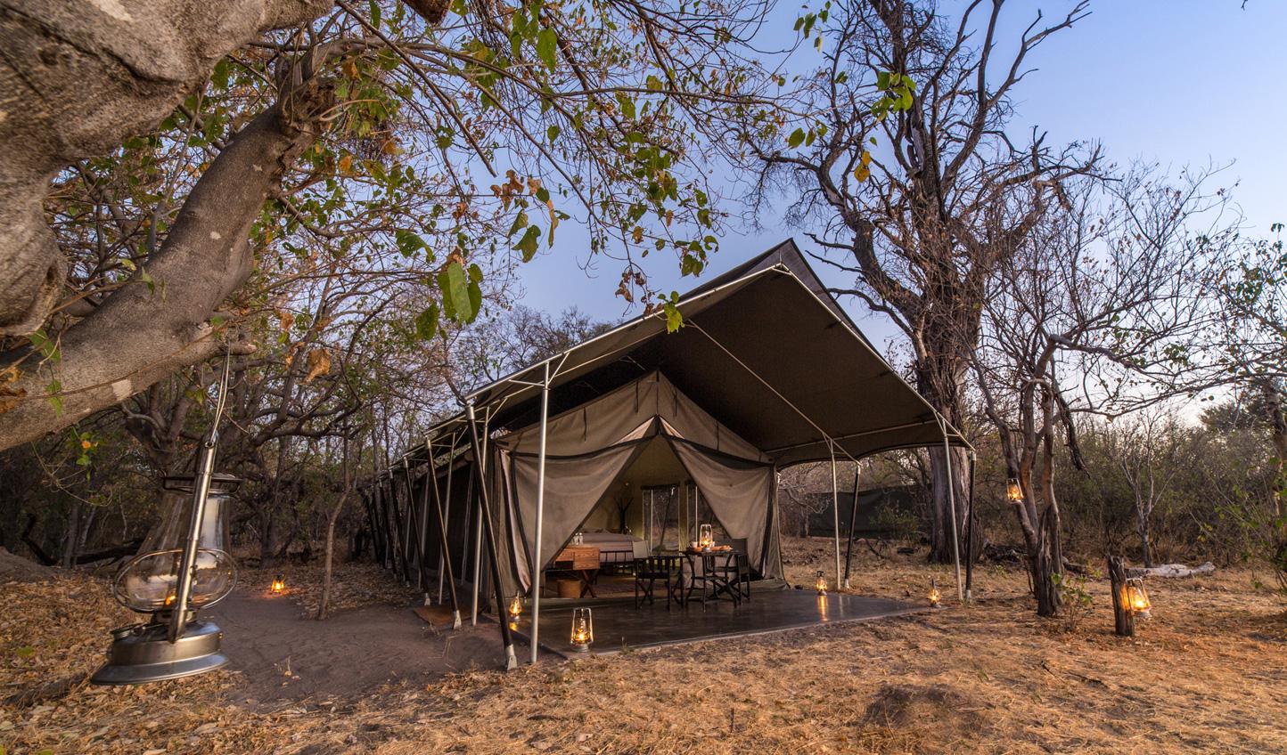 A truly immersive safari experience