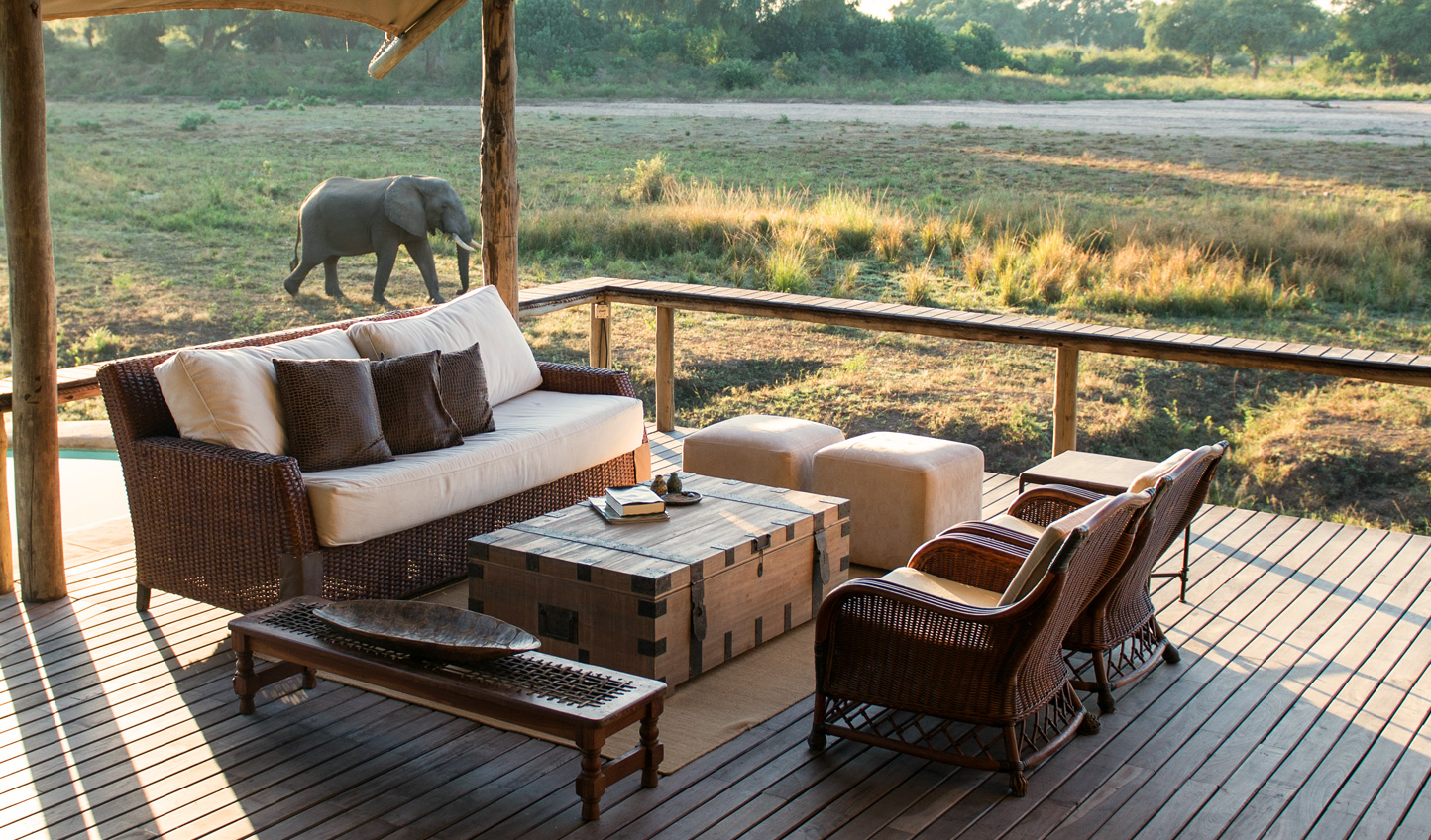 See game animals wander right past you at Anabezi