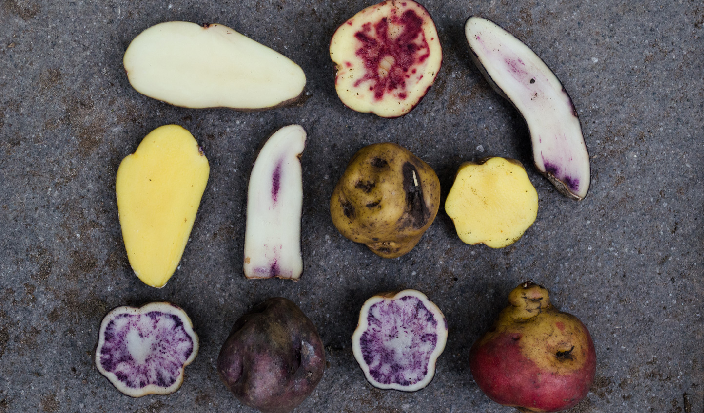 Peru is famous for its enormous variety of potatoes