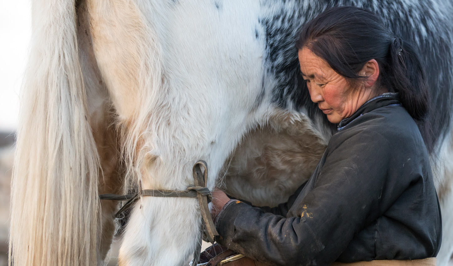 Embrace local life as you learn to milk a yak