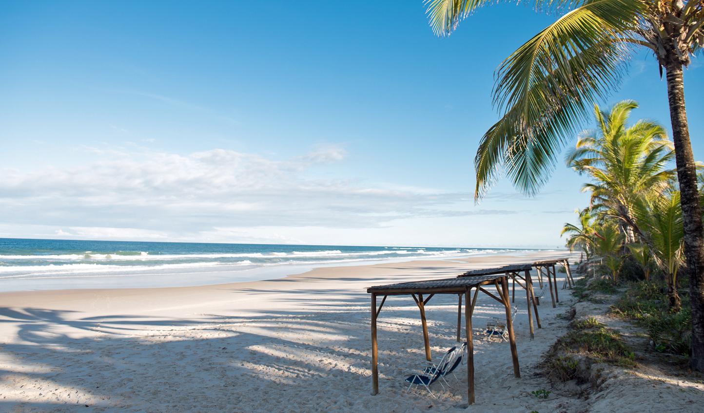 A peaceful morning on the beach