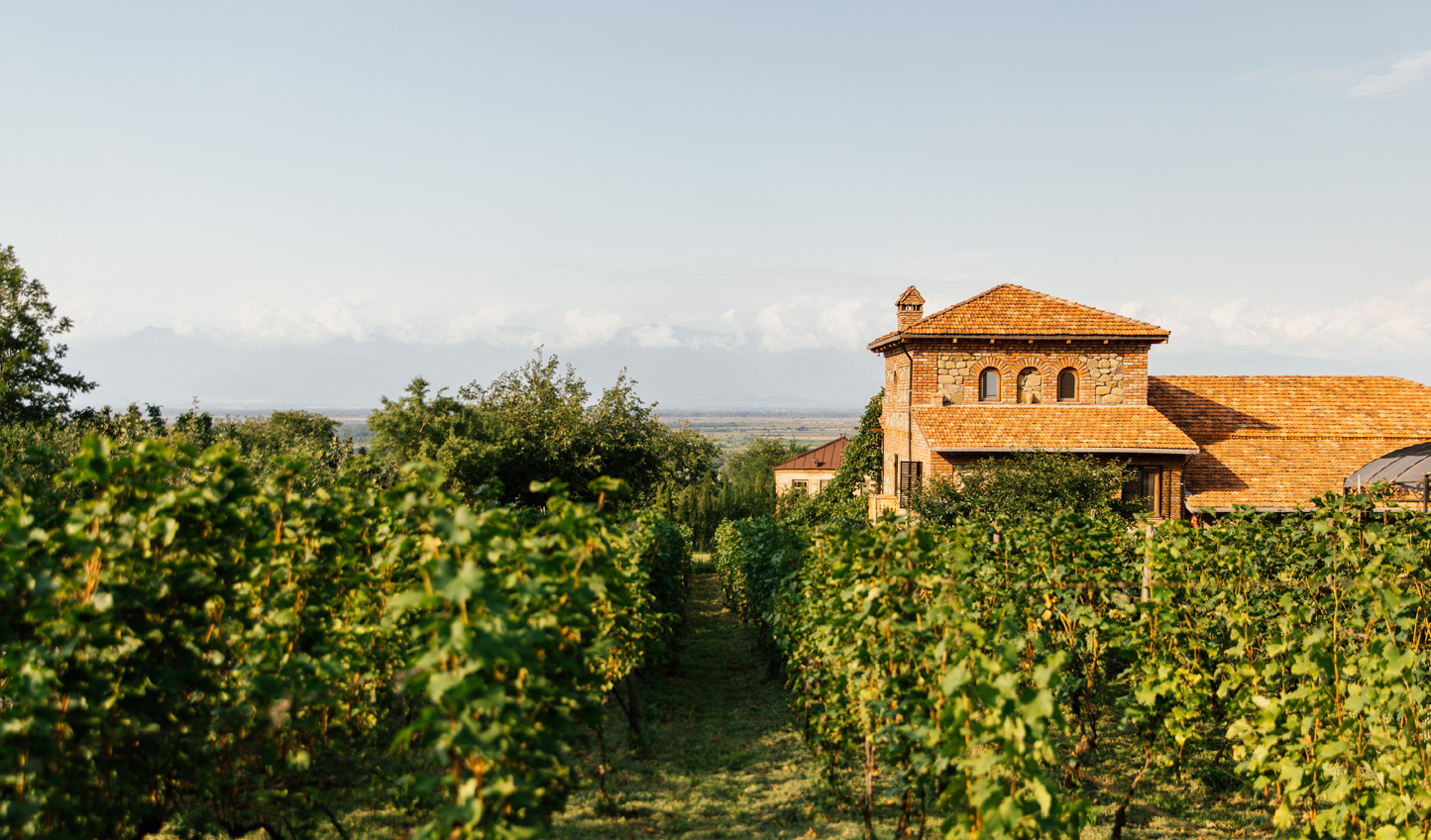 Discover the heart of the Georgian wine country from Chateau Svanidze