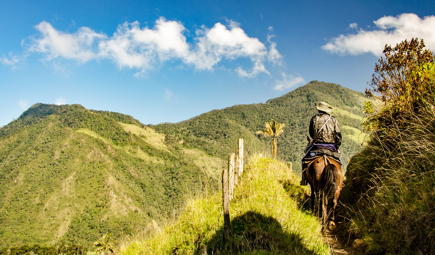 Your journey on horseback in Cafetero