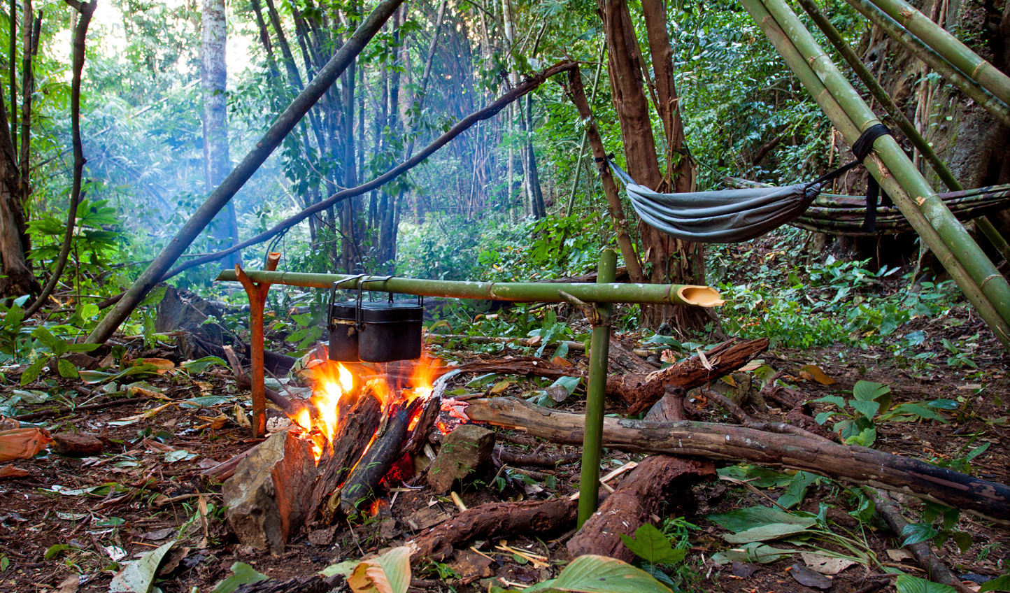 Do you have what it takes to survive in the Amazon?