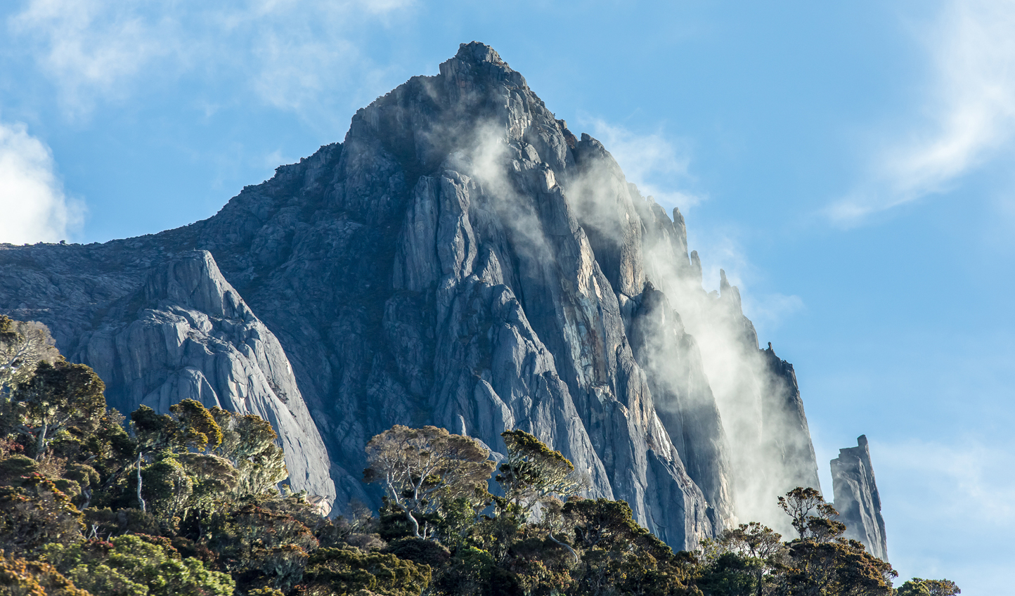 Mount Kinabalu from the forest floor