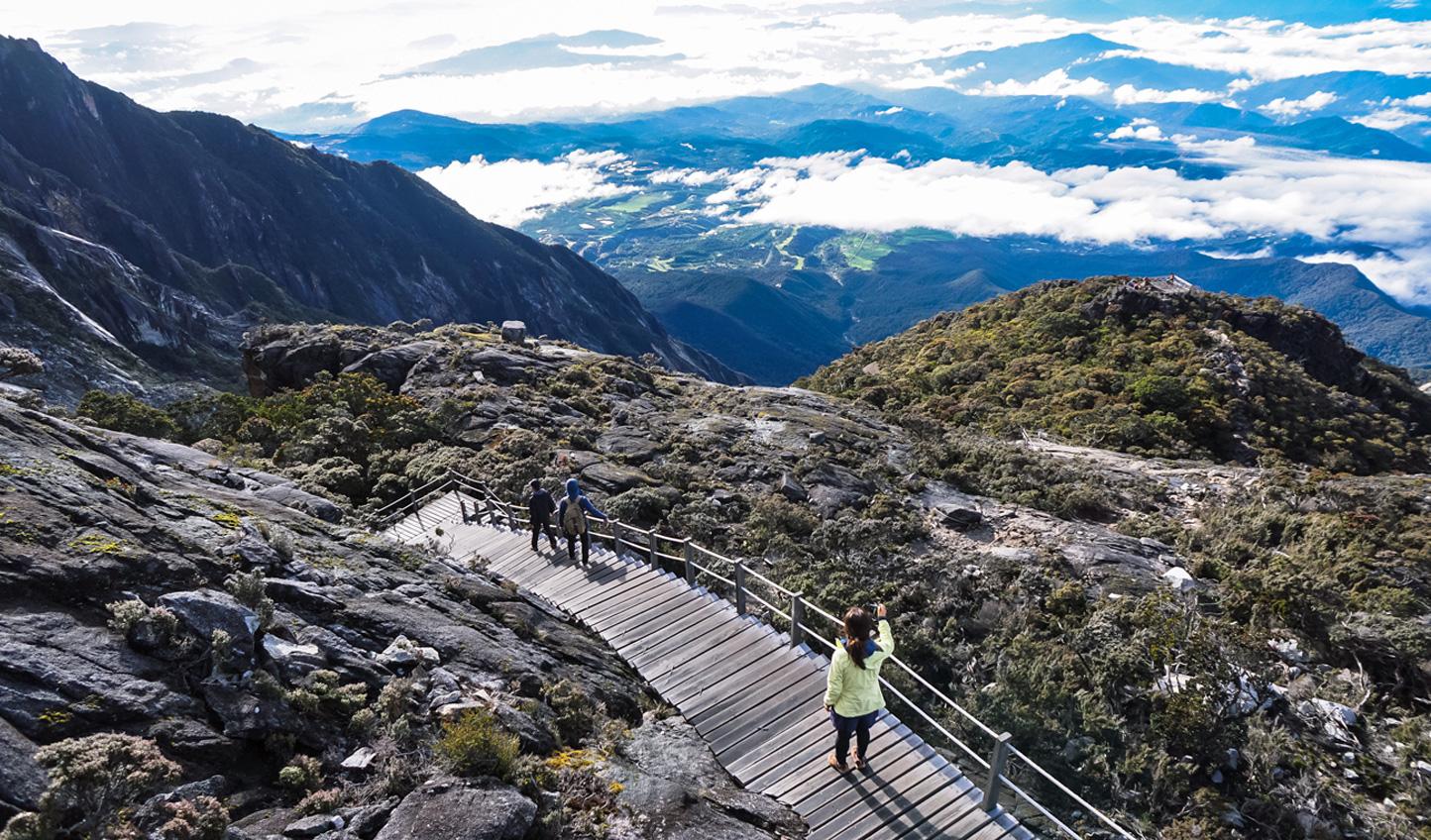 Trek through lush flora and fauna while summiting Mount Kinabalu