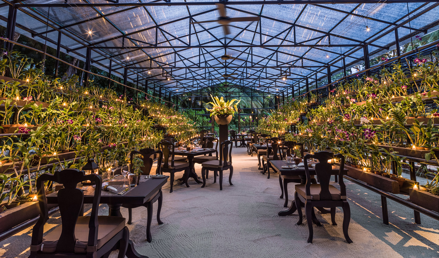 Dine amid the fragrant blooms of the Orchid House