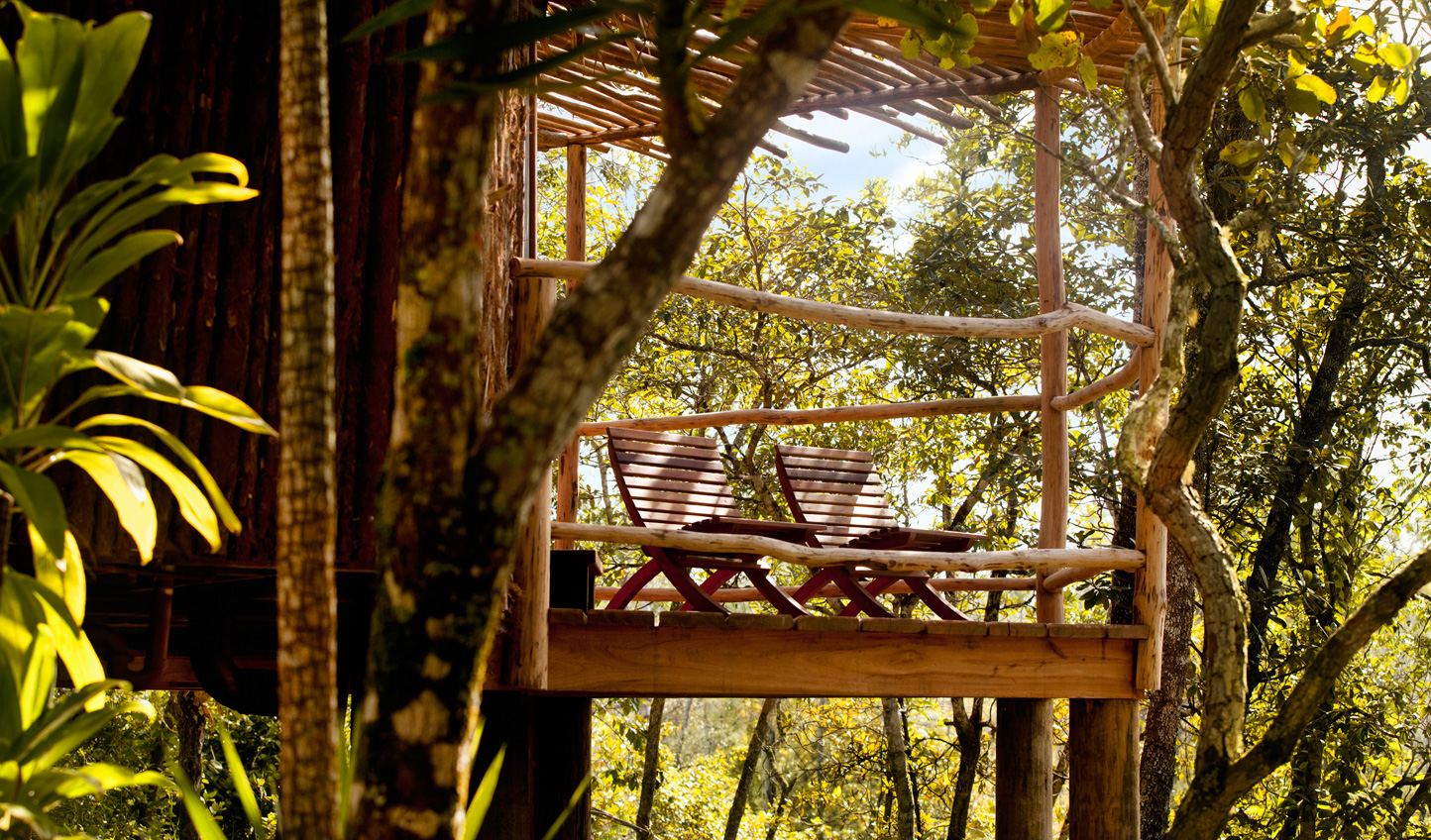 Hideaway in the treetops at Gaia Riverlodge
