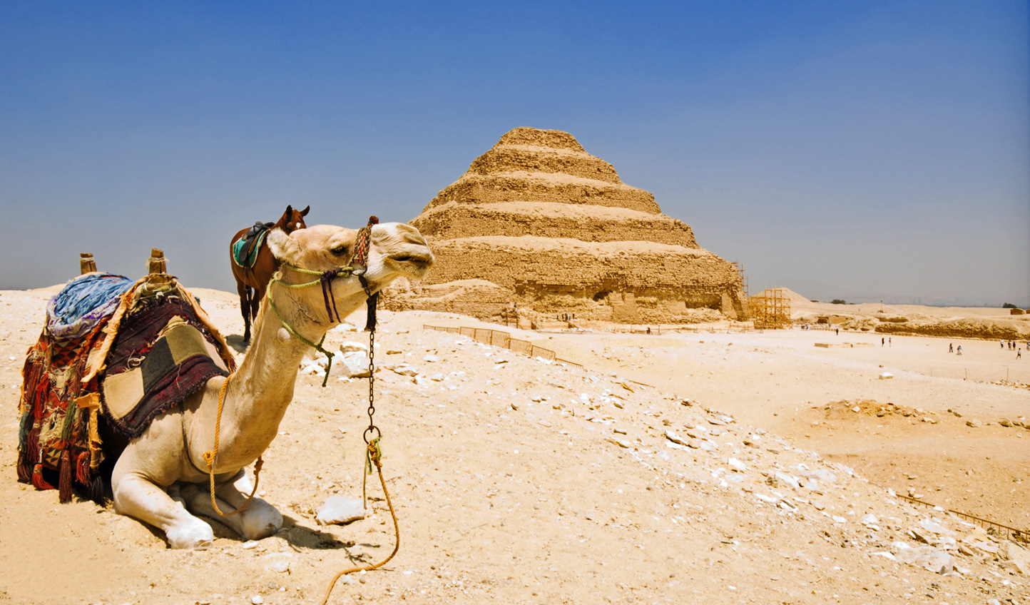 Head out of the city to Saqqara