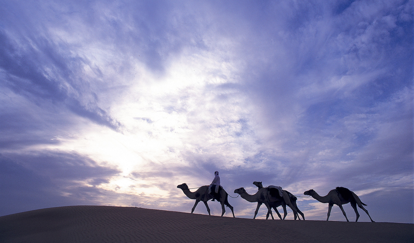 You simply cannot stay in the Dubai desert and not experience a camel trek