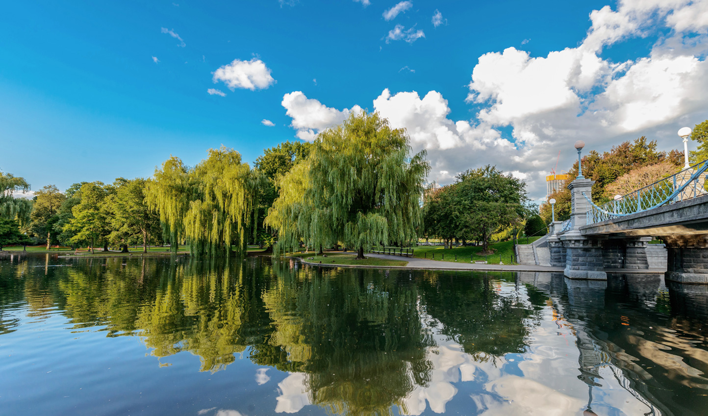 Stroll through Boston's very own 'Central Park'