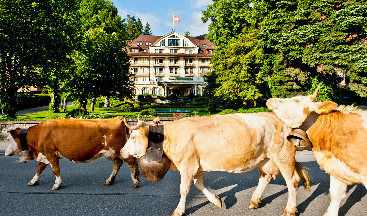 Get a taste for local Swiss life in the summer months