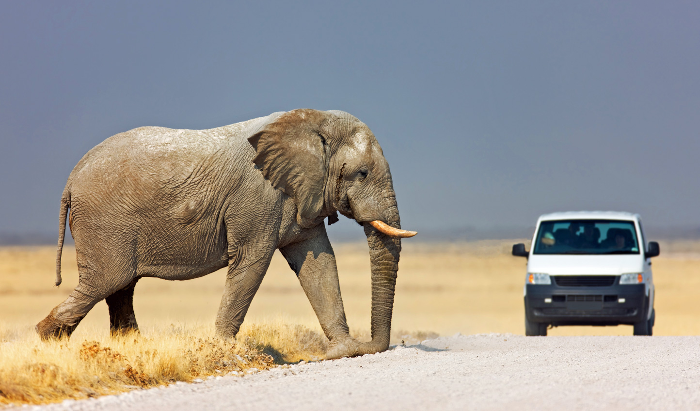 Drive across the Namibian landscapes, passing a few locals along the way
