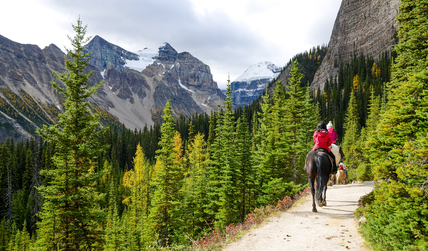 Saddle up and head out to explore