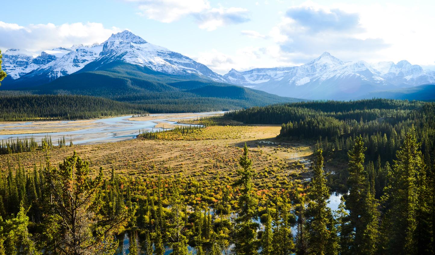 Cross the Saskatchewan Pass up to Alberta