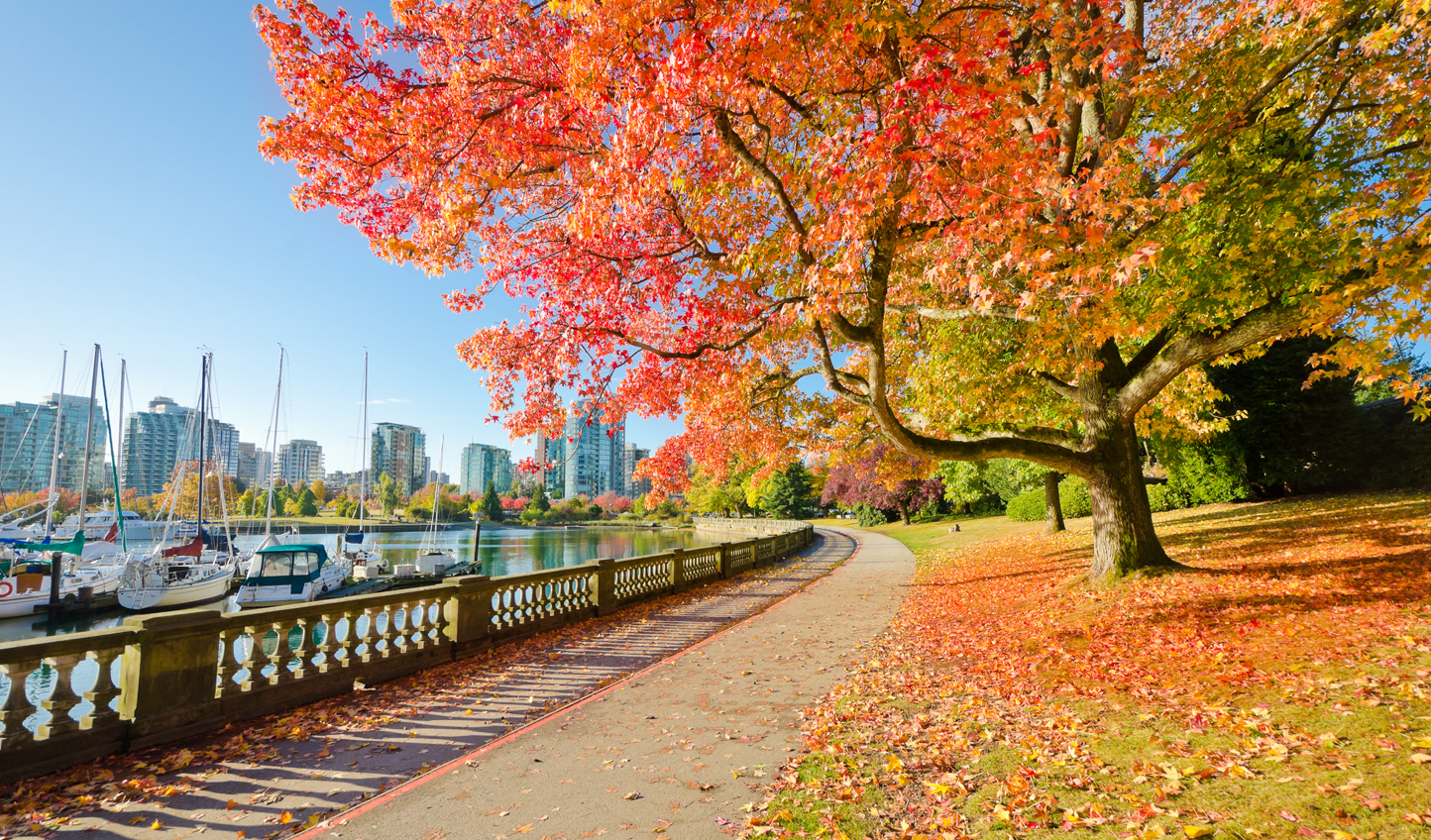 Cycle through Stanley Park