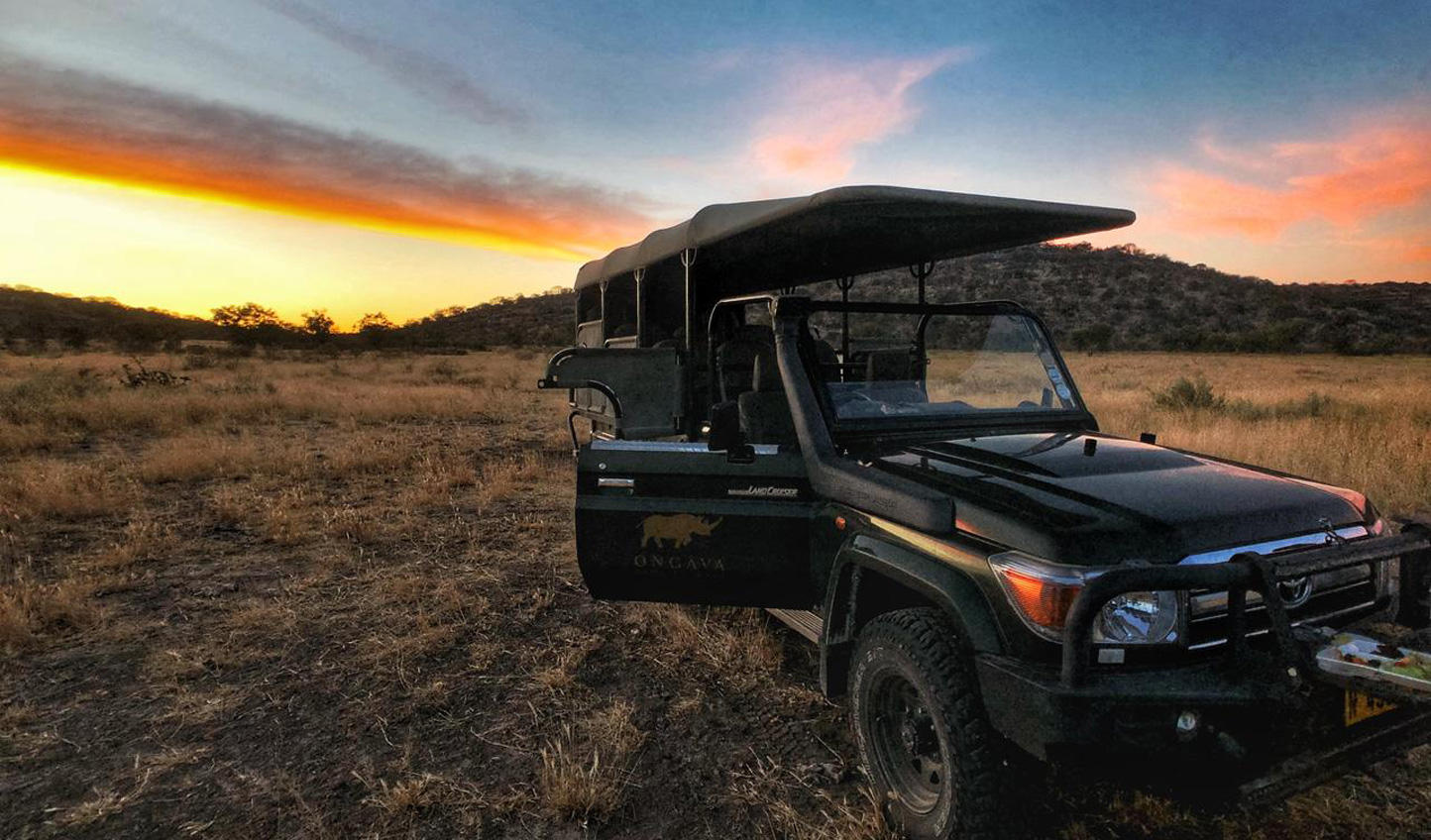 Hop into a 4x4 and venture out on safari