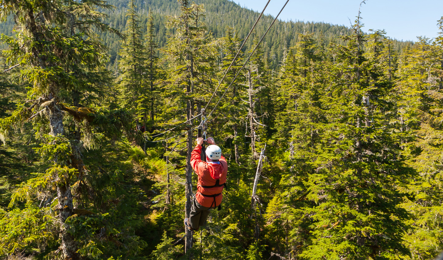 Soar through the treeline on a zip-trekking adventure