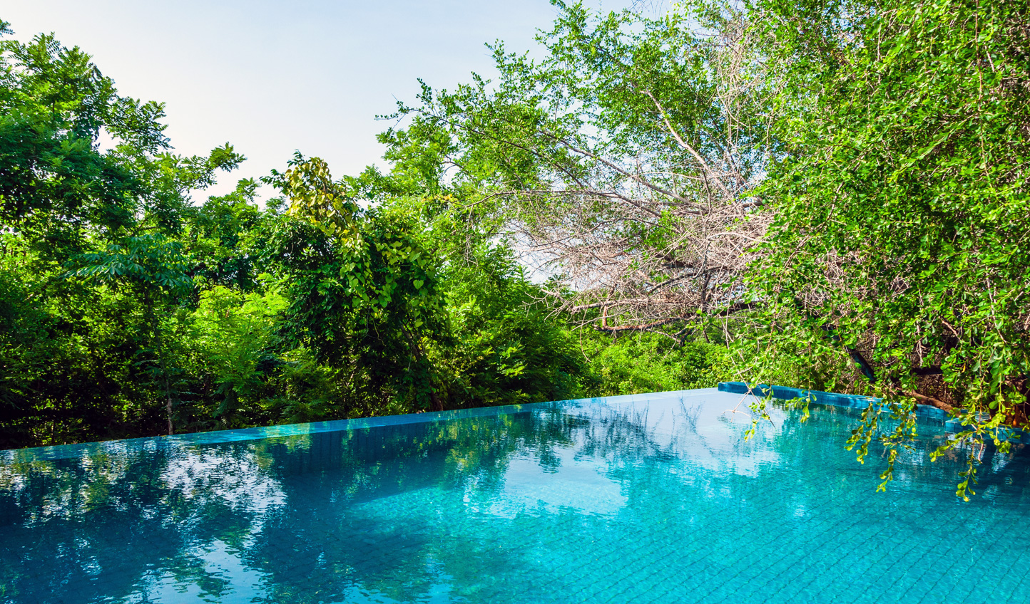 Tropical hues at every turn as you dive into the jungle pool