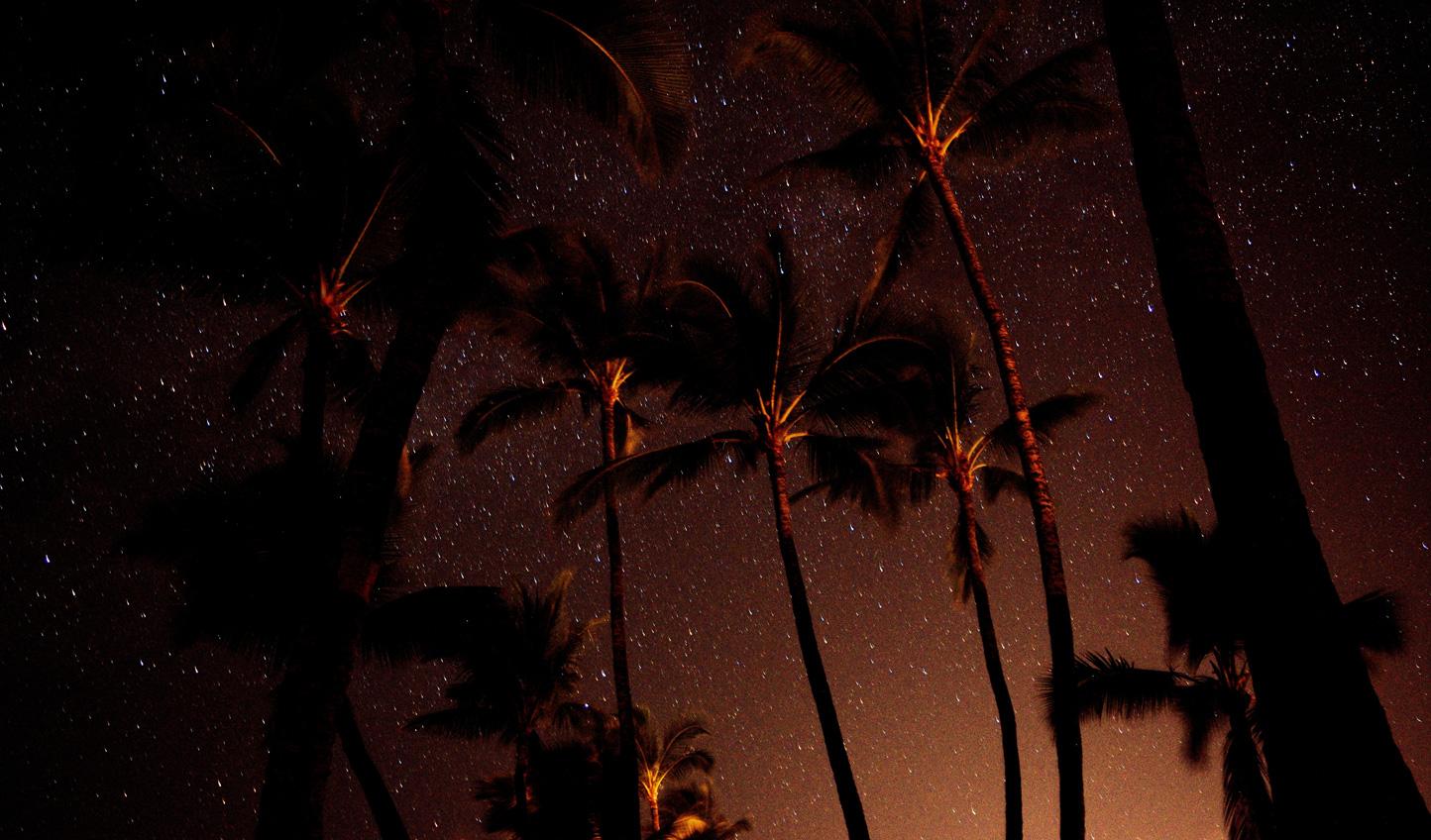 Watch the stars blaze across the sky by night