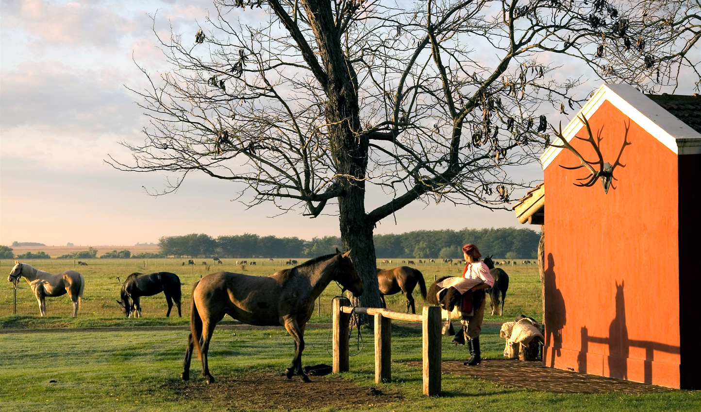 Live life on the Estancia and explore your surroundings by horseback