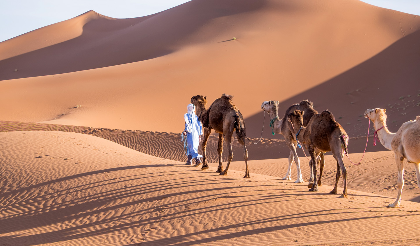 Embark on a luxury adventure through the deserts of Morocco