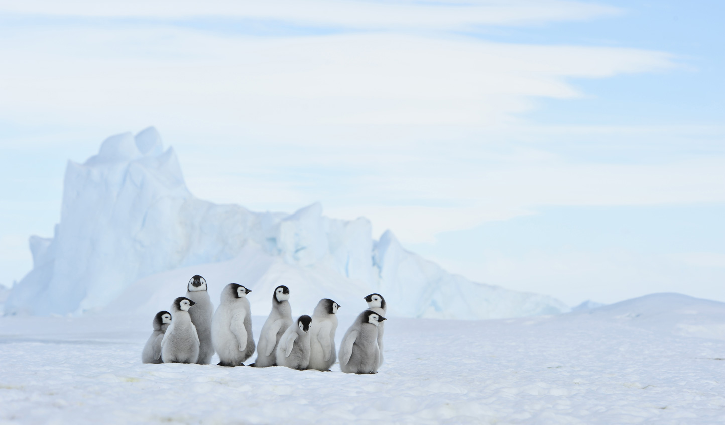 Step into the unknown on a luxury adventure in Antarctica