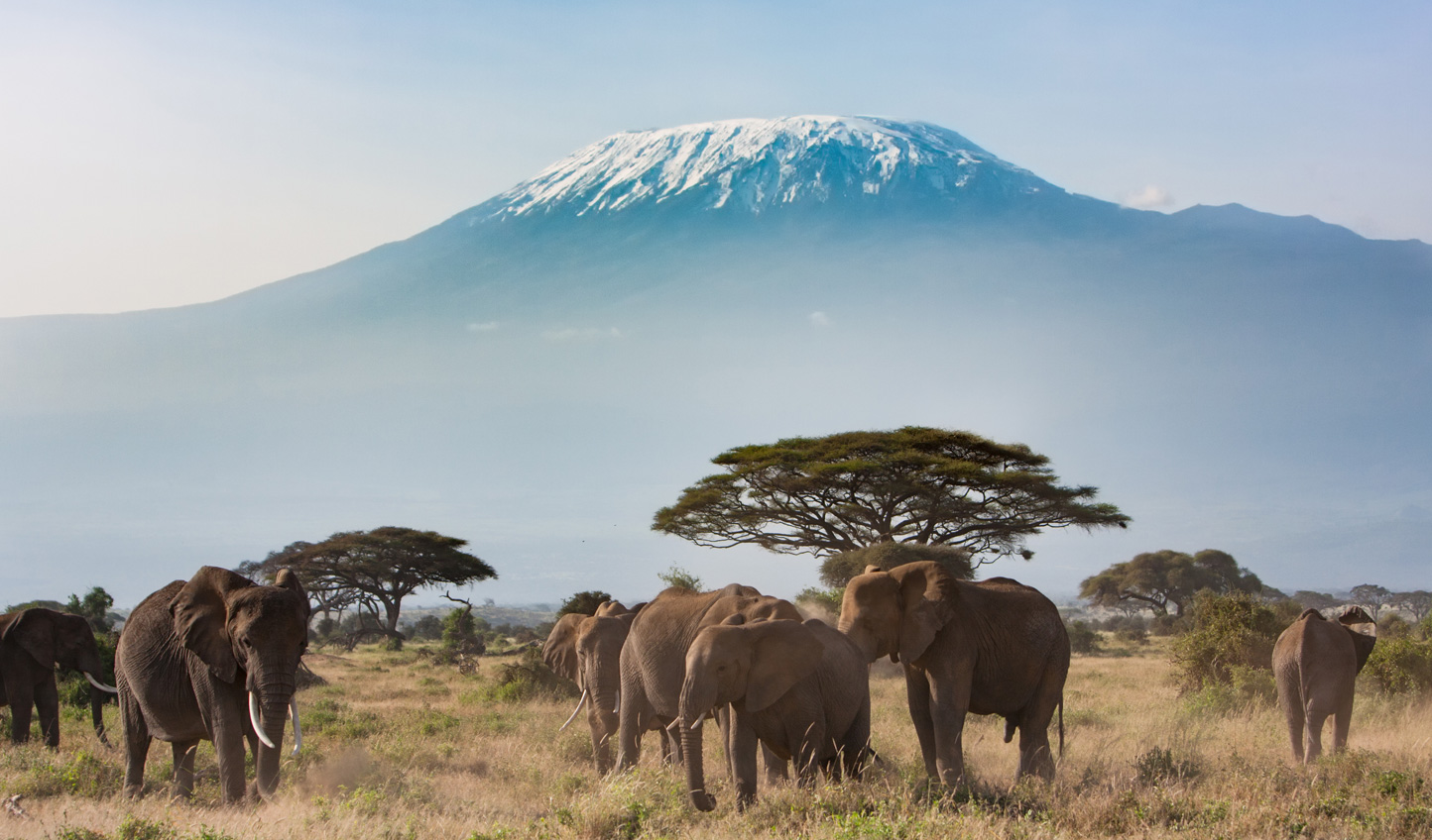 Challenge meets reward on an exhilarating Mt Kilimanjaro hike