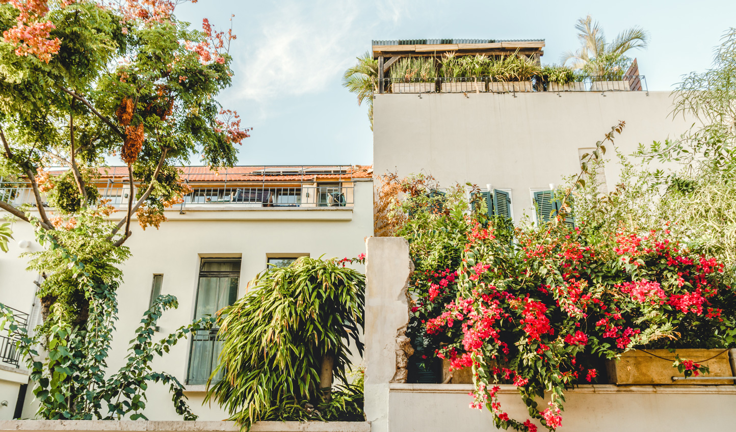 Stroll through the picturesque streets of Neve Tzedek
