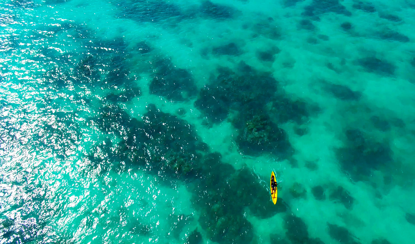 Explore the pristine waters of Hawaii by kayak