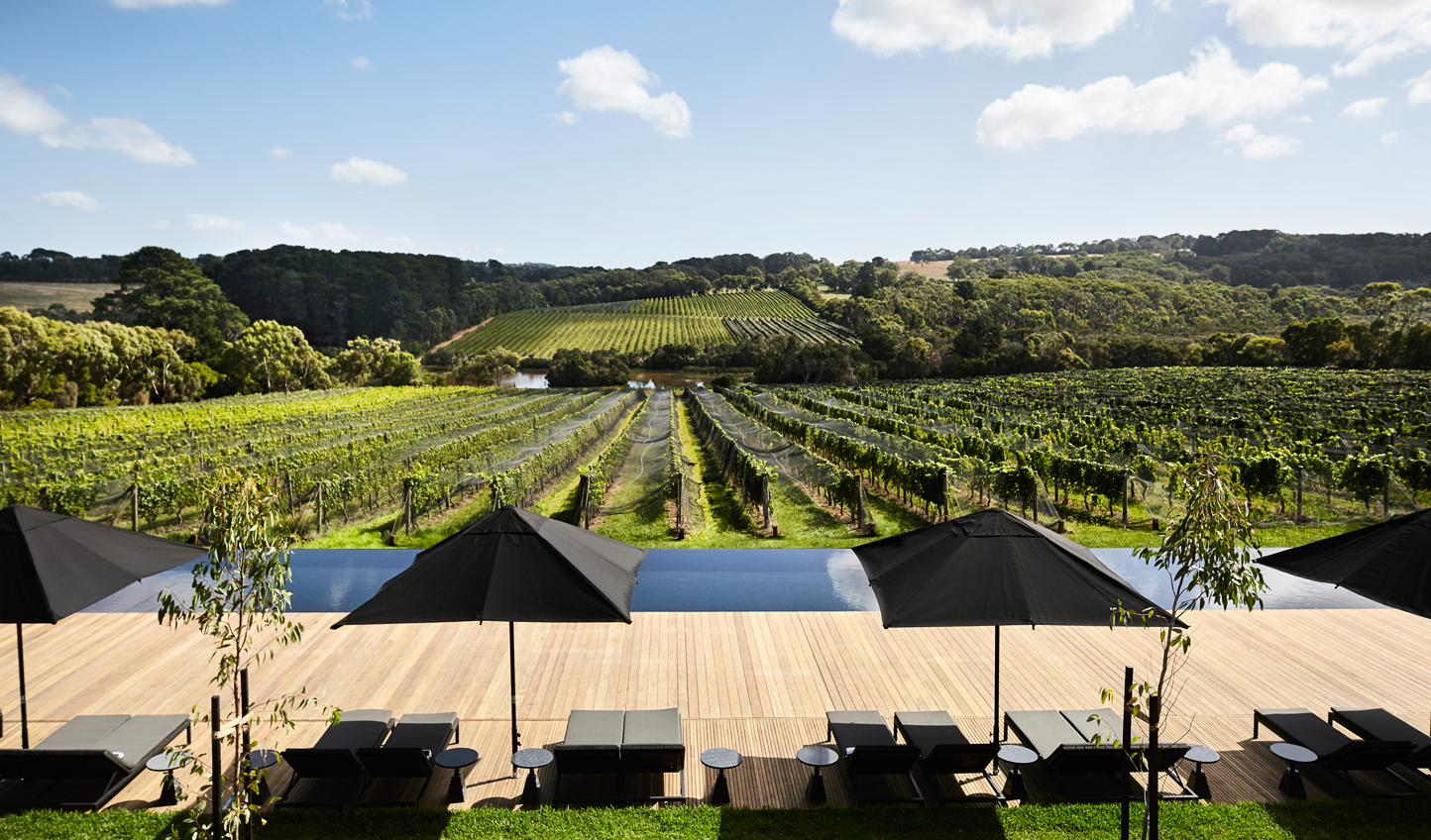 Enjoy a dip in the pool with a view of the vines